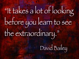Bailey Looking Sunday Art Photography Quote June 16